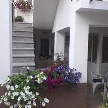 Apartments Šime in Trogir