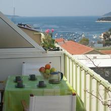 Apartments Marica Plenkovic in Zarace