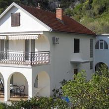 Apartments Ognjenović in Kotor