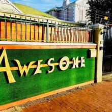 Awesome Backpackers in Cape Town