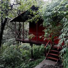 Ayar Jungle Camp in Kota Bagh