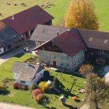 Baby- und Kinderhof Aicherbauer in Franking