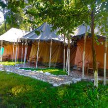Beas Adventure Camp in Kullu