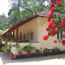 Beeticad Estate Stay in Coorg