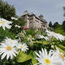 Boutique Hotel Schloss Matzen in Gallzein