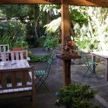 Brown Kiwi Travellers Hostel in Auckland