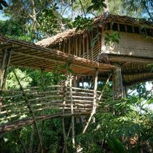 Bukit Raya Guesthouse in Palangkaraya