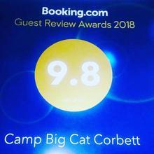 Camp Big Cat Corbett in Ramnagar
