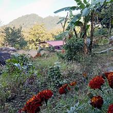 Camp Brookhill in Kota Bagh