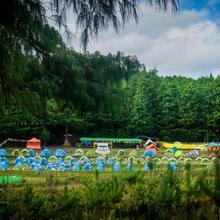 Camp Kite Manja | Ziro Arunachal Pradesh in Ziro