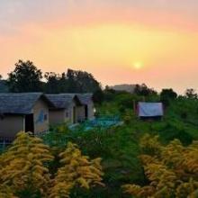 Camp Milieu - A Birding Paradise in Nainital