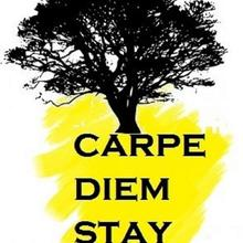 Carpe Diem Stay in Suntikoppa