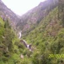 Cedar View in Banjar