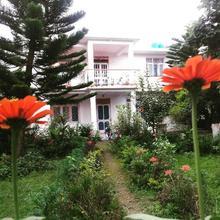 Cg Homestay in Mandi