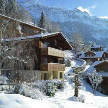 Chalet Gerbera in Grindelwald