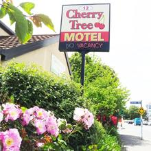 Cherry Tree Lodge Motel in Christchurch