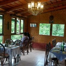 Chestnut Grove Himalayan Lodge in Chaukori