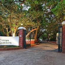 Citrus Chambers Mahabaleshwar in Mahabaleshwar