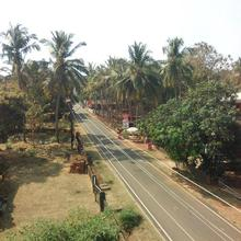 Clesters Nest in Agonda