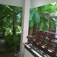 Coconut Grove in Aluva