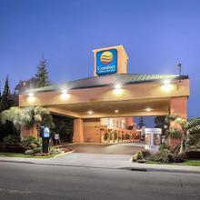 Comfort Inn & Suites Oakland Airport in Hayward