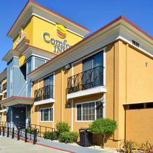 Comfort Inn Castro Valley in Hayward