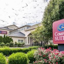 Comfort Suites Columbus in Columbus