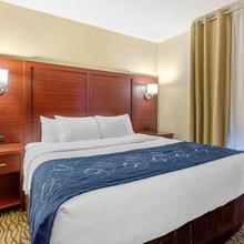 Comfort Suites Downtown Windsor in Detroit
