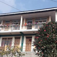 Conifers Homestay in Aritar