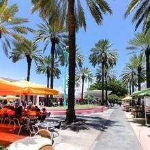 Daiquiri in Miami Beach
