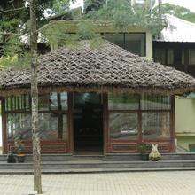 Deep Woods Resort in Munnar