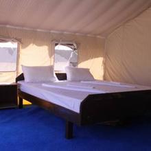 Desert Oasis Camp in Leh