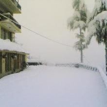 Devdhar Cottage in Kasol