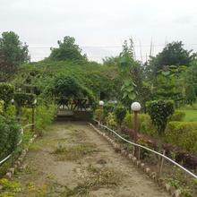 Dudhwa Jungle Lore in Palia Kalan