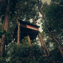 Ela Ecoland Nature Retreat in Munnar