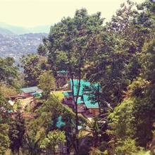 Enchanted Forest Farmstay in Gangtok