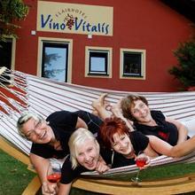 Flair Hotel Vino Vitalis in Schonburg