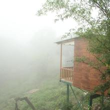 Forest Eco Lodge in Mount Abu