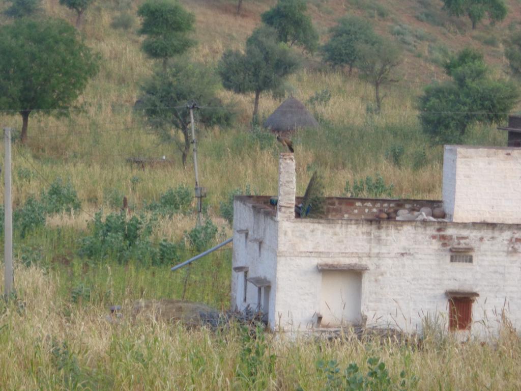Gangaram Ki Dhani Homestay in Chirai