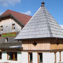 Gasthof Rieseralm in Kienberg