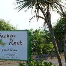 Geckos Rest in Saint Eval