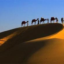 Golden Dune Camp in Dedha