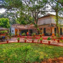 Granpa's Inn - Bougainvillea in Goa