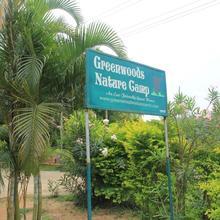 Greenwoods Nature Camp in Gudalur