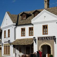 Halasi Pince Panzió in Beremend