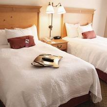 Hampton Inn & Suites Atlanta/Duluth/Gwinnett in Allendale