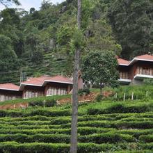 Hanging Huts Resorts in Coonoor