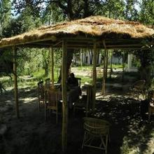 Himalayan Eco Resort in Leh