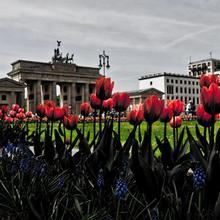 Hostel Potsdamer Platz in Berlin