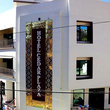 Hotel Cedar Plaza in Champawat